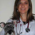 Revista-Cardiologia-Veterinaria-em-foco-volume03-dra-Patricia